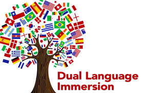 How to Apply to our Mandarin Dual Language Immersion Program
