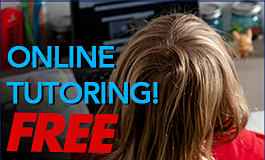 Online Tutoring (graphic)