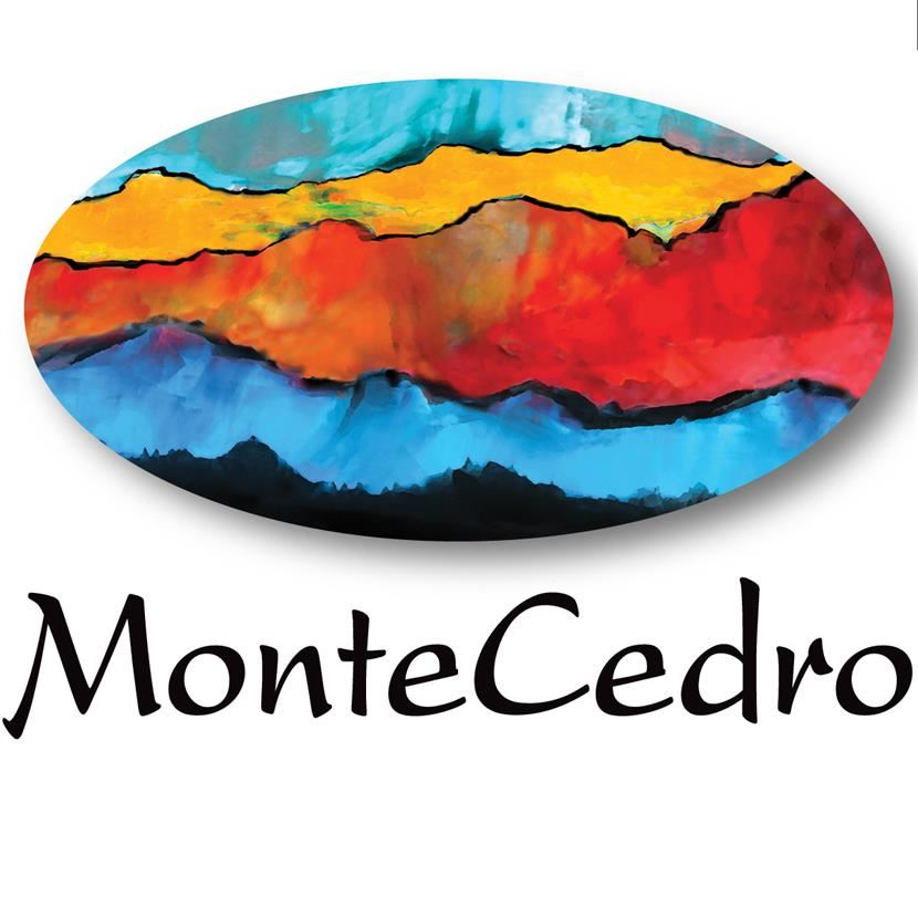 Thank you to our partners at Montecedro for supporting our arts programs.