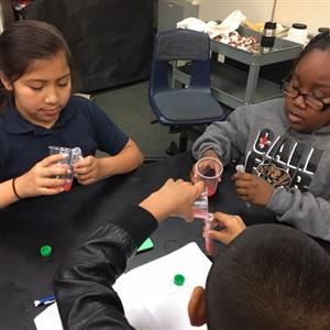 Cleveland students extracting DNA from strawberries