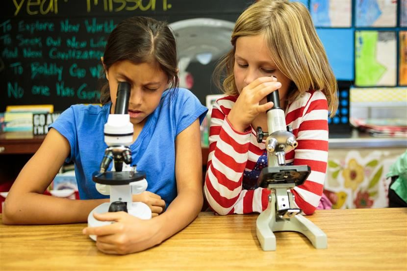 2 girls look into microscopes